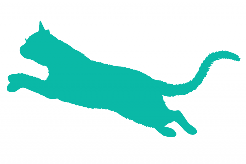 Fall In Love With eLearning: Cat jumping