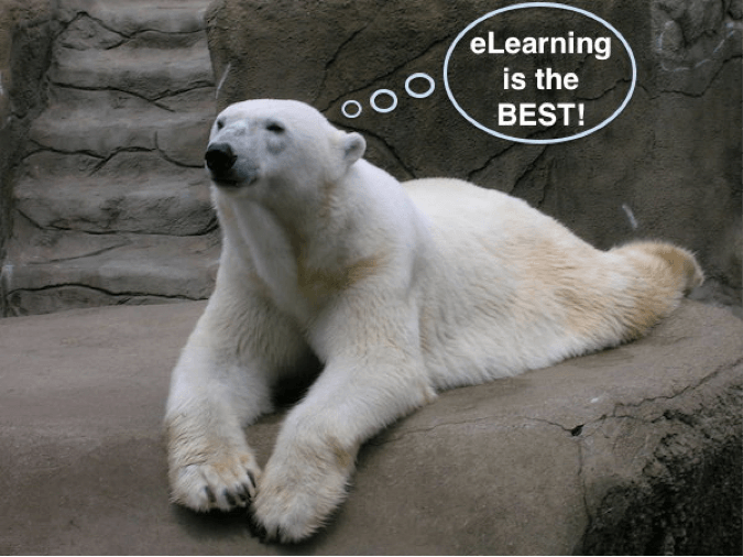 eLearning 101: Getting Started With Online Training polarbear