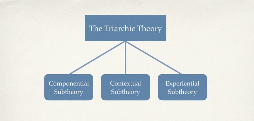 5 Tips To Use The Triarchic Theory In Online Training