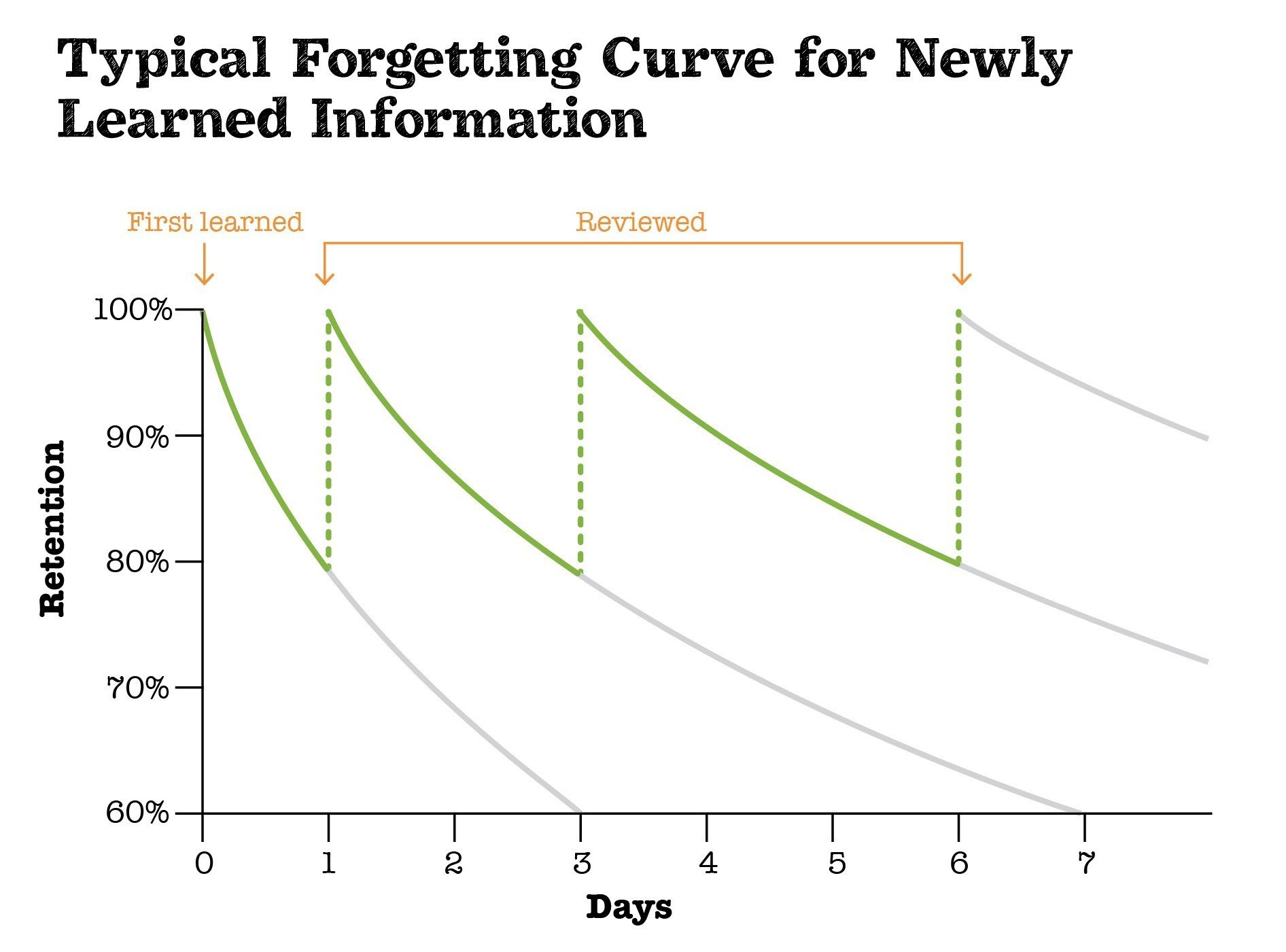 Forgetting Curve and the Value of Repetition