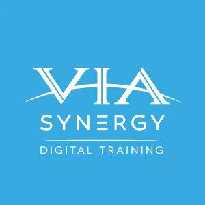 ViaSynergy Ltd logo