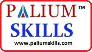 Palium Skills logo