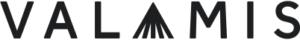 Valamis - Learning Experience Platform logo