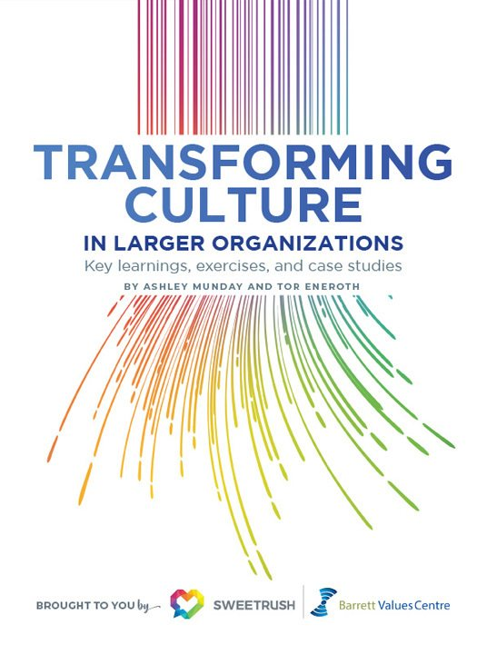 Free Ebook: Transforming Culture In Larger Organizations