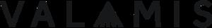 Valamis Inc. logo
