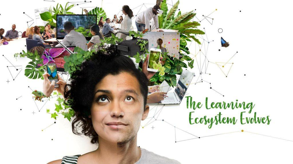 2019 Instructional Design Trends And Learning Trends: The Ecosystem Evolves