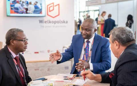 Learnability And Employability Unlocking Africa's Future Success