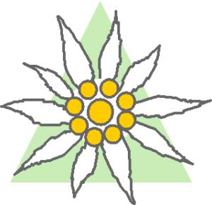 Edelweiss Group logo