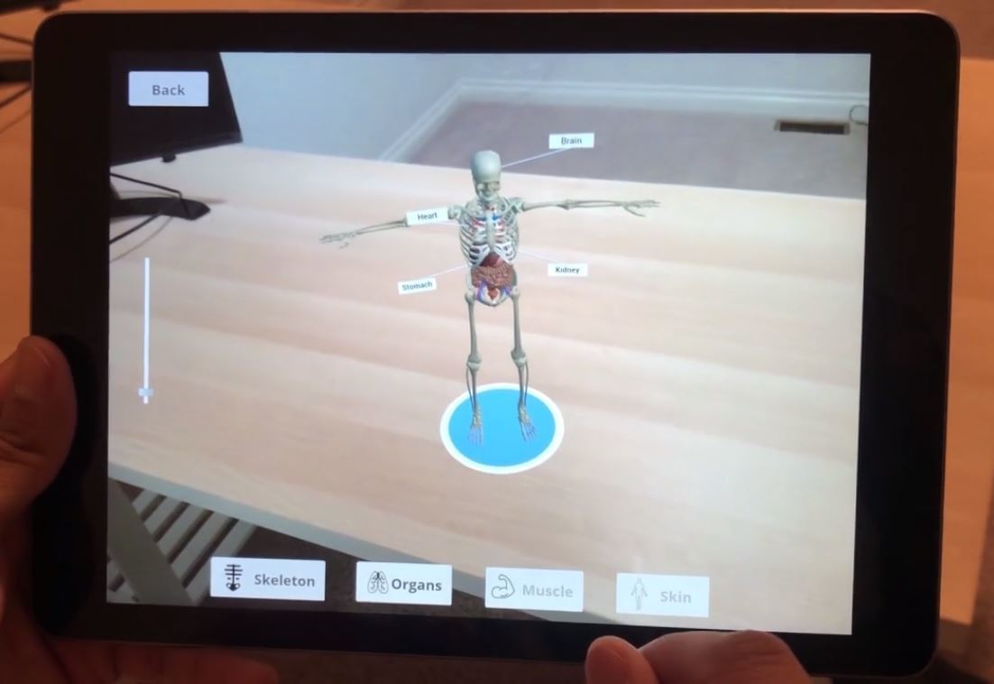 An interactive learning experience of the human anatomy in an AR environment.