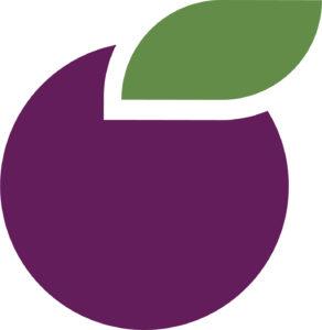 Plum eLearning logo