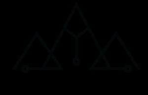 Digital Wellness Institute logo