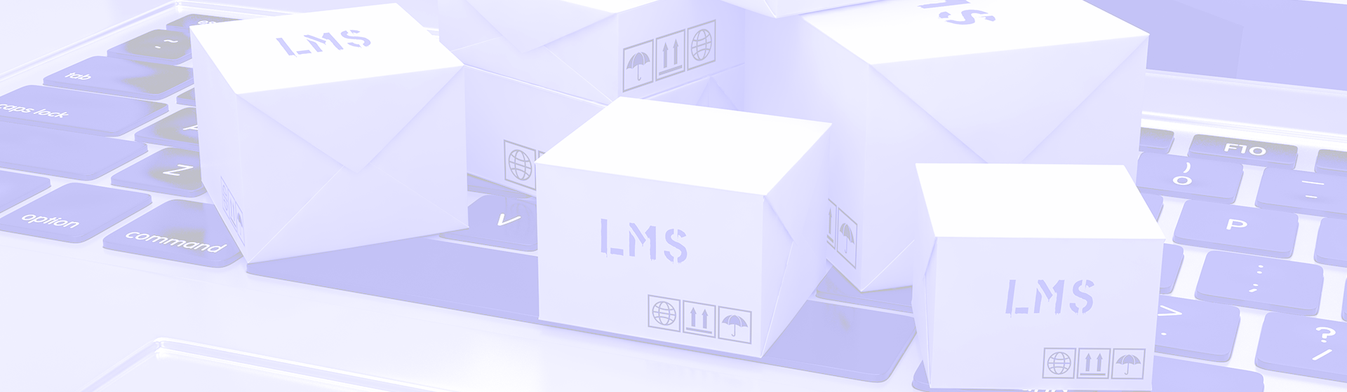 Simple Tips To Implement Your New LMS