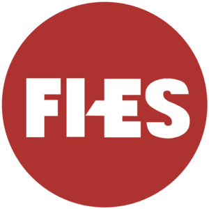 FI-ES Systems Pvt Ltd logo