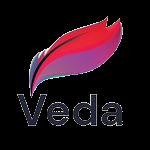 Veda School Management System logo
