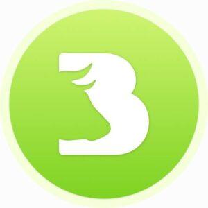 Bravon logo